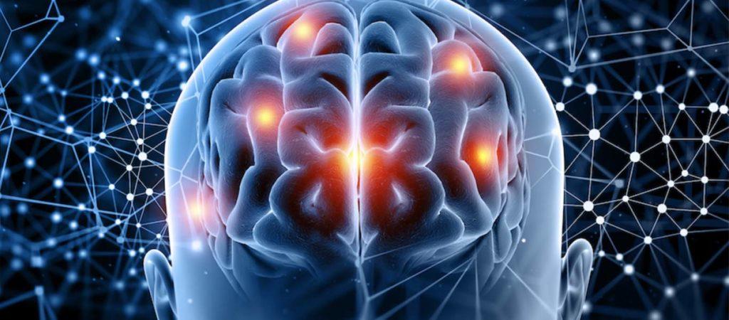 endocannabinoidensysteem